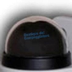 Protezione telecamera